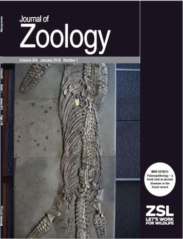 JZoology cover